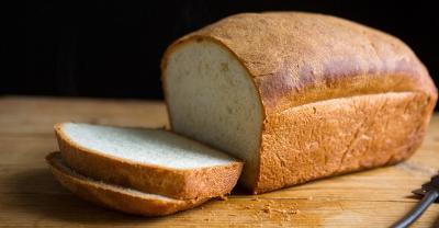 Roti Kecoa Dinilai Mengandung Protein Lebih Tinggi daripada Daging