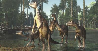 Ditemukan Dinosaurus Spesies Baru Diyakini Hidup 100 Juta Tahun Lalu