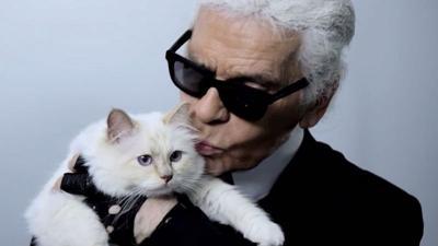 8 Fakta Unik Choupette, Kucing Karl Lagerfeld yang Berpenghasilan Rp42 Miliar Setahun