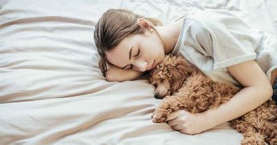 Tidur Bareng Anjing Bisa Cegah Mimpi Buruk