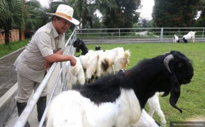 Ajudan Sebut Prabowo Mampu Berbicara dengan Hewan