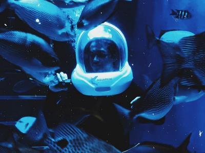 Jakarta Aquarium Suguhkan Pencak Silat Underwater dan Bikin Ondel-Ondel di HUT DKI Jakarta