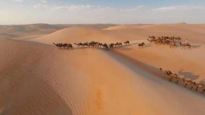Panas Banget! Suhu Jeddah Sampai 50 Derajat Celcius