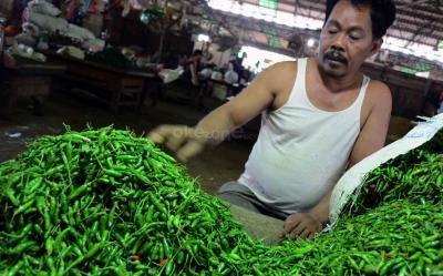 Masyarakat Curhat Tak Sanggup Beli Cabai Rawit Seharga Rp100.000 Kg