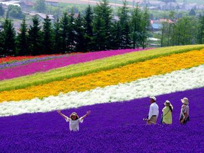 Rekomendasi Destinasi Wisata Liburan Musim Panas ke Jepang