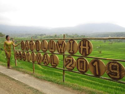 Sensasi Kemah dengan Pemandangan Sawah di Festival Jatiluwih 2019