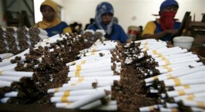Cukai Naik 23%, Pendapatan Negara Vs Jumlah Perokok