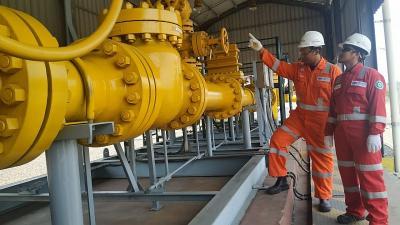 Target Bauran Energi Bisa Tercapai, Segini Keuntungan Negara dari Penghematan Impor