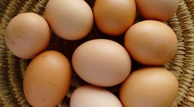 Pakar: Telur Bisa Kena Bakteri Jika Dicuci Pakai Air Dingin