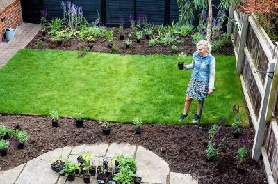 Ciptakan Suasana Asri, Intip Tips Membuat Taman di Rumah