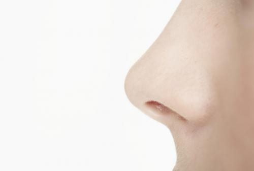5 Cara Kontur Hidung untuk Pemula