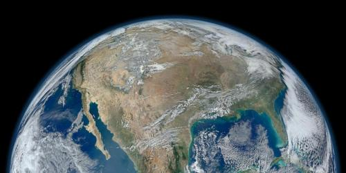 Bumi miliki lahan kosong untuk 1 triliun pohon