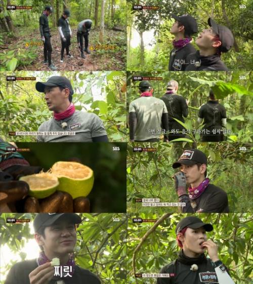 Law of the Jungle (Foto: SBS)
