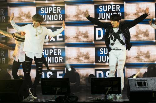 Super Junior D&E