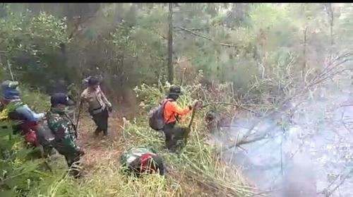 Pemadaman Kebakaran Hutan di Gunung Sumbing (foto: Taufik Budi/iNews)