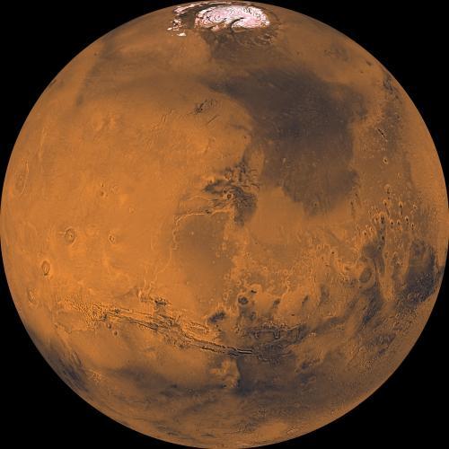 Elon Musk Siapkan 1.000 Pesawat Starship untuk Kirim Orang ke Mars