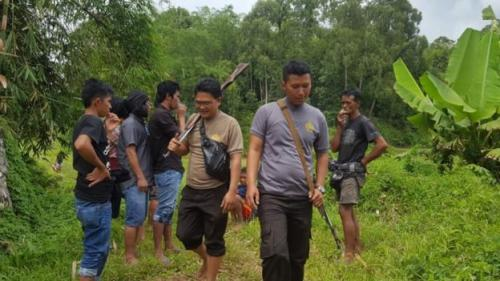 Polisi dan warga mengejar dan menembak kerbau yang lari sebelum disembelih (foto: BBC News Indonesia)