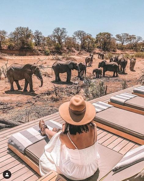 Afrika memiliki pesona yang indah ditambah lagi dengan pemandangan yang dramatis, membuat orang-orang berlibur ke negara tersebut.