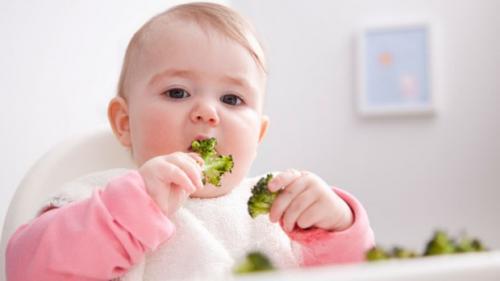 bayi makan sayur