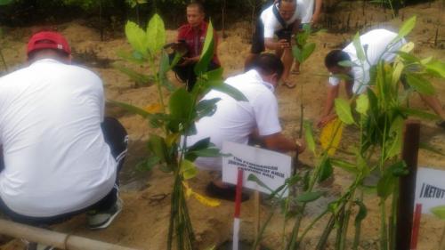 Partai Perindo tanam Mangrove di Bali (Dok Bali)