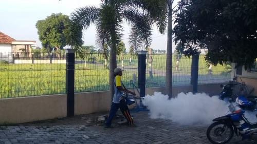 Caleg Perindo fogging di Tuban