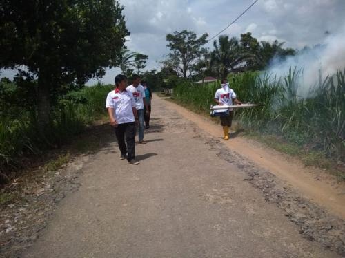 Fogging di Desa Tambah Subur Kecamatan Way Bungur Kabupaten Lampung Timur (foto: Ist)
