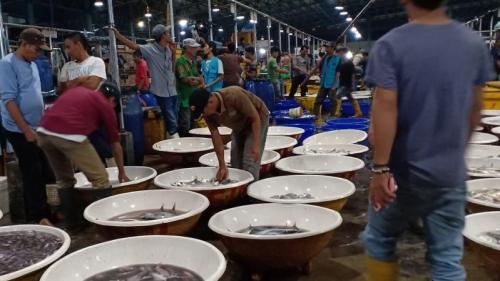 Tempat pelelangan ikan Muara Angke. (Foto : Muhamad Rizky)