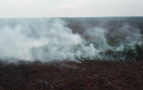 Karhutla Riau