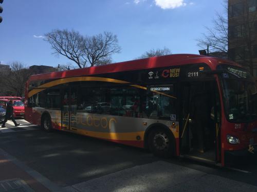Circulator bus memiliki beberapa jalur yaitu blue, yellow, purple, green, orange, dan red.