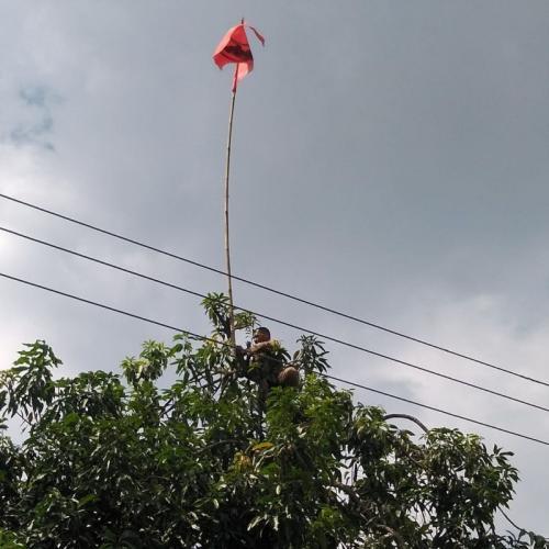 Bawaslu Karanganyar Copot APK di Atas Tower (foto: Ist)