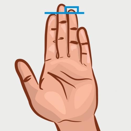 Jari telunjuk lebih pendek dari jari manis