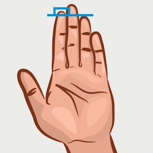 jari telunjuk lebih panjang dari manis