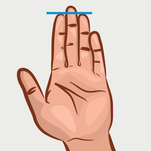 jari telunjuk dan manis sama panjang