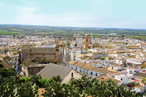 Dari Barcelona anda bisa menggunakan bus maupun kereta menuju Osuna, Spanyol.