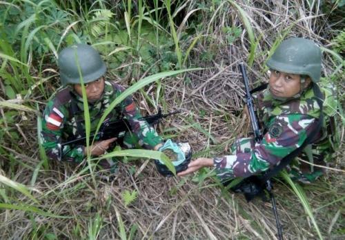 TNI Temukan Ganja