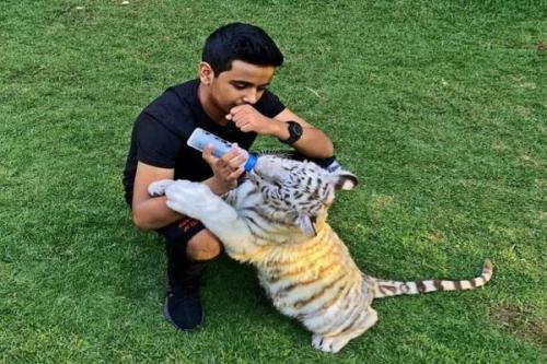 Crazy Rich Dubai bermain dengan harimau di kebun binatang pribadi