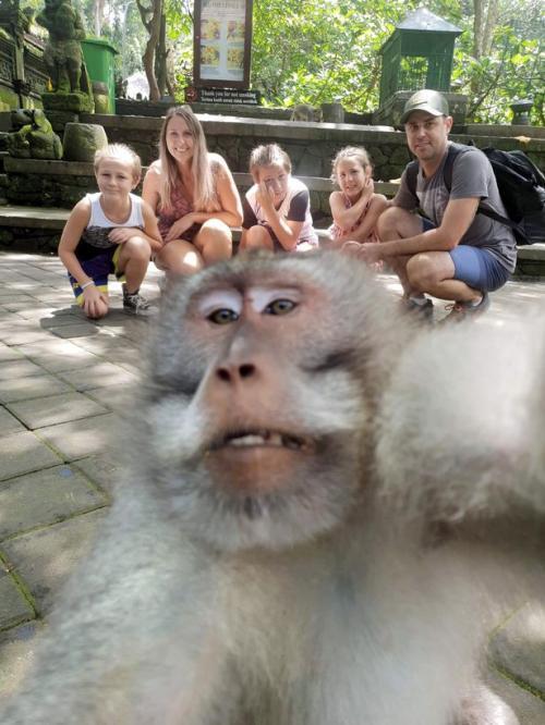 Turis foto dengan monyet