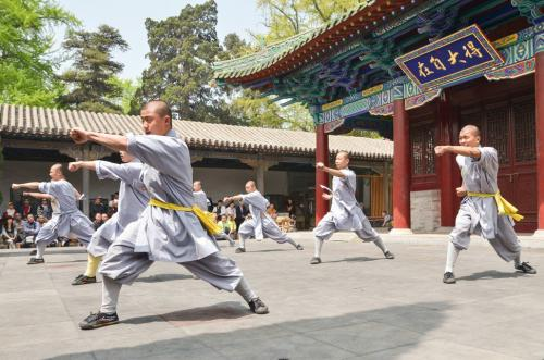 Sepatu Shaolin