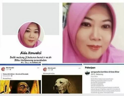 Penghinaan Presiden Jokowi mirip mumi. (Foto: Ist)