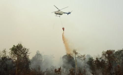 Pemadaman kebakaran hutan dan lahan menggunakan helikopter. (Ist)