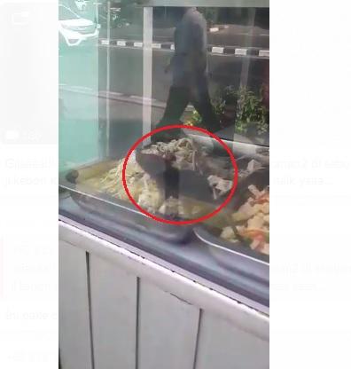Tikus di warteg