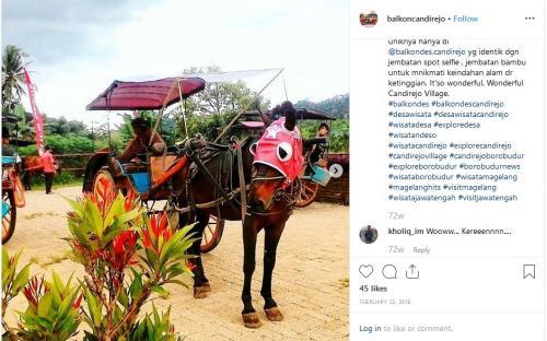 Wisata naik kuda