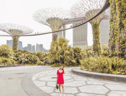 Alyssa Daguise Singapura