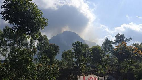 Kebakaran Hutan di Gunung Panderman