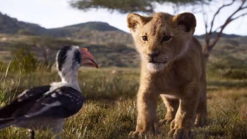 China menjadi penyumbang pendapatan terbesar untuk The Lion King. (Foto: Disney)