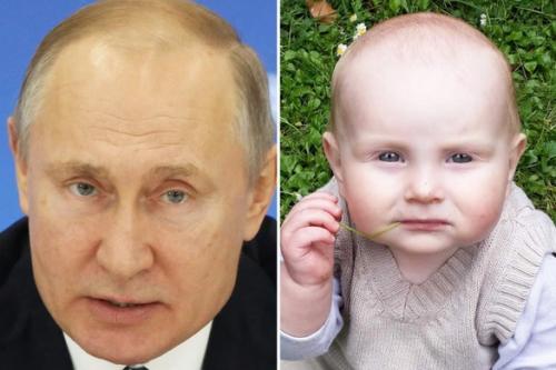bayi mirip putin
