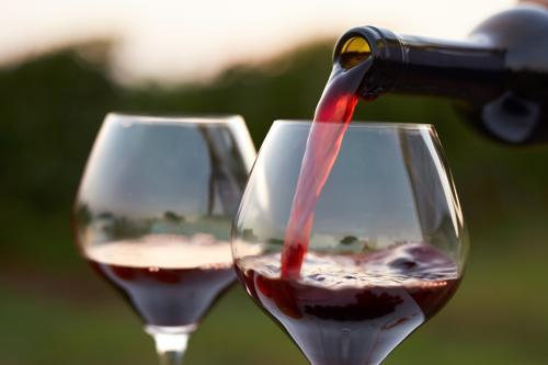 Ilustrasi minuman wine