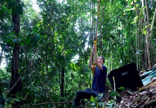 Teknologi Google AI membantu petugas patroli untuk melindungi hutan di Sumatera Barat.