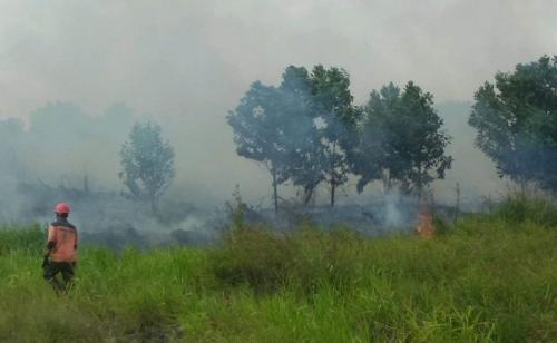 Penanggulangan Kebakaran di Kabupaten Kampar Riau oleh Satgas Karhutla. (ist)