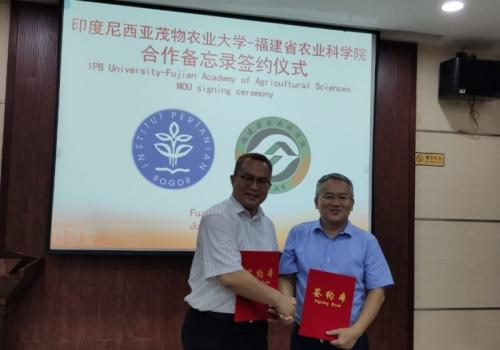 IPB China (Dok ipb)